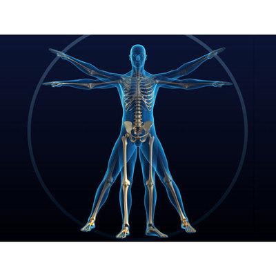Diella Dr. Domenico - Medici specialisti - fisiokinesiterapia Barletta