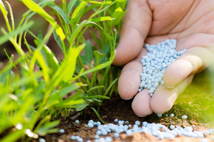 Fertilizzanti AGRICOLA ARCISATE