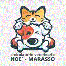 Ambulatorio Veterinario Associato Noe' Marasso