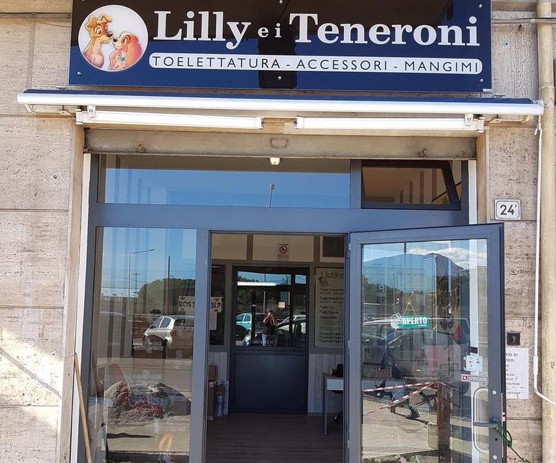 Negozi di animali a Palermo Via Giuseppe Pitrè  e9ccce92abc