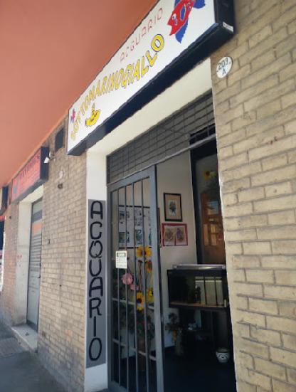 negozio di acquari SOTTOMARINO GIALLO