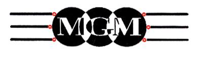 MGM di MINI MARCO & C. snc