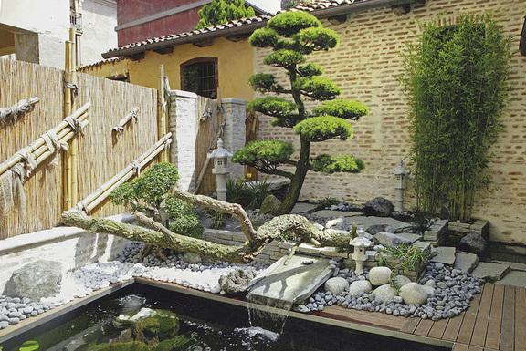 Vivaio piante e fiori porcellato loria via masaccio 14 for Giardini ornamentali
