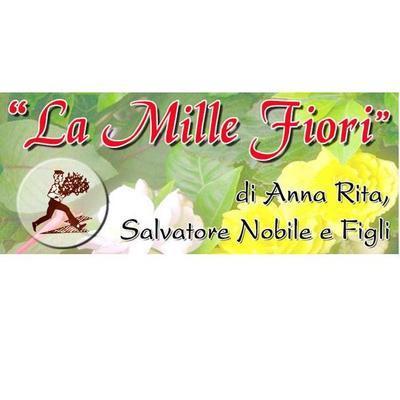 Agenzia Funebre Nobile La Mille Fiori - Fiori e piante - vendita al dettaglio Guagnano