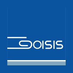 Goisis - Informatica - consulenza e software Brescia