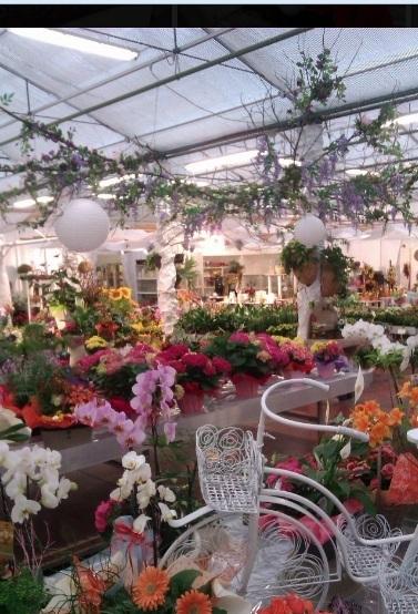 Esposizione interna fiori