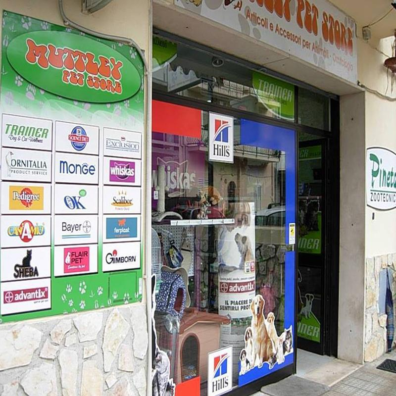 Toelettatura Cani Muttley Pet Store
