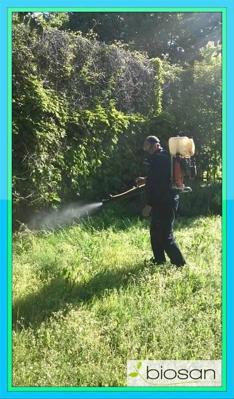 manutenzione del verde  BIOSAN - SERVIZI INTEGRATI PER L'AMBIENTE