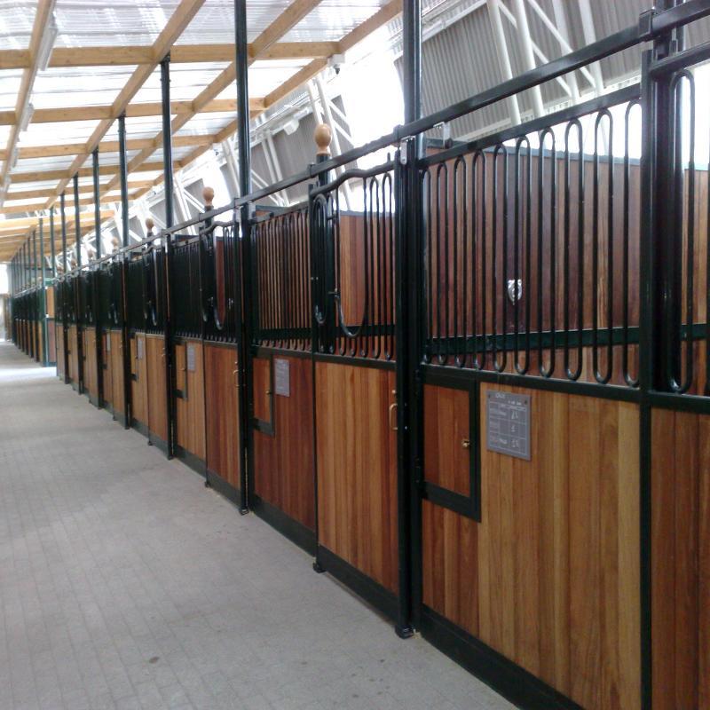 boxes cavalli
