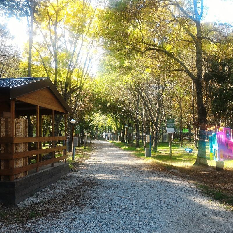 Altosavio camping bagno di romagna strada provinciale 43 37 - Campeggio bagno di romagna ...