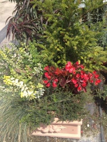 Arredo giardino in provincia di Padova | PagineGialle.it