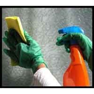 Preventivo per l 39 idea impresa di pulizia alessandria for Tripo arredamenti alessandria