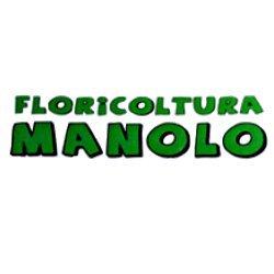 Floricoltura Manolo - Fiori e piante - vendita al dettaglio Viareggio