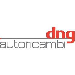 D.N.G. Autoricambi Srl - Ricambi e componenti auto - commercio Terni