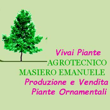Agrotecnico Masiero Emanuele - Vivai Piante - Vivai piante e fiori Montegrotto Terme