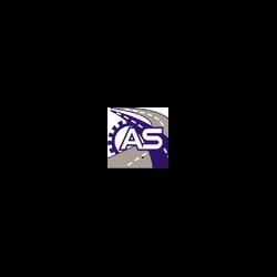 A.S. Assistance Noleggio Autogru - Carrelli elevatori e trasportatori - commercio e noleggio Napoli