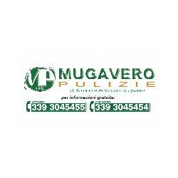 Impresa di Pulizie Mugavero Multiservizi - Macchine pulizia industriale Asti