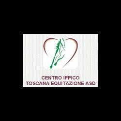 Toscana Equitazione - Sport impianti e corsi - equitazione Montespertoli