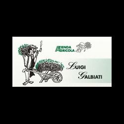 Azienda Agricola Luigi Galbiati - Fiori e piante - vendita al dettaglio Castelveccana