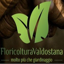 Floricoltura Valdostana Due - Vivai piante e fiori Saint-Vincent