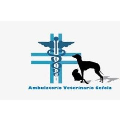 Ambulatorio Veterinario Cefola Dott. Nicola - Veterinaria - ambulatori e laboratori Rionero In Vulture