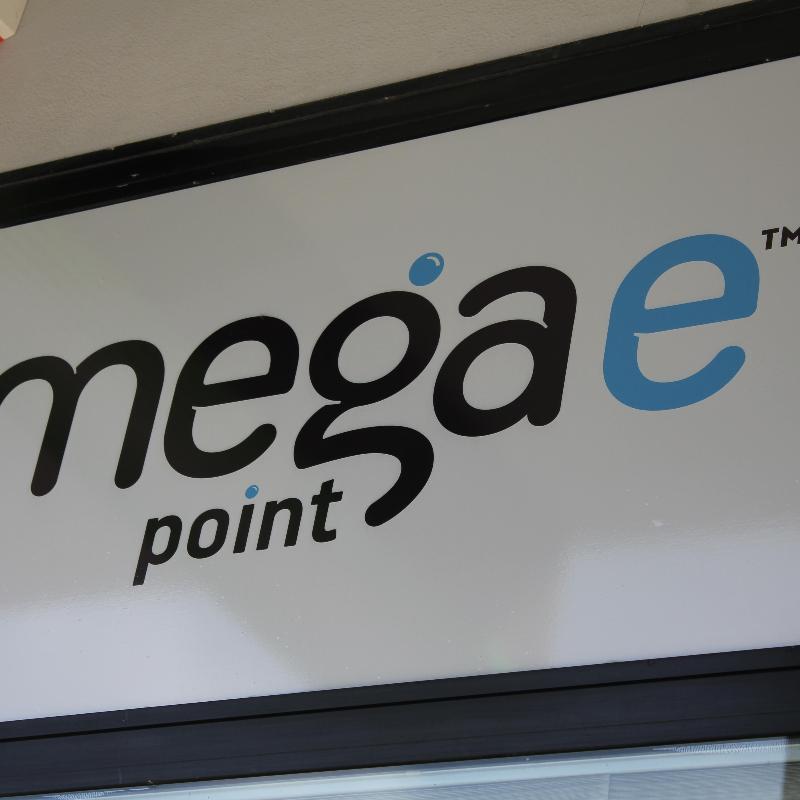 MEGAE POINT