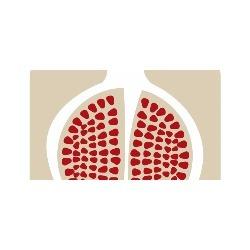 Cofood - Consulenza di direzione ed organizzazione aziendale Ragusa