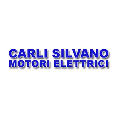 Carli Silvano Riparazione Motori Elettrici - Motori elettrici e componenti Cassano Magnago