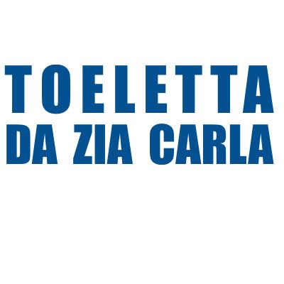 Toeletta da Zia Carla - Animali domestici - toeletta Roma