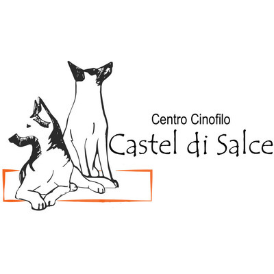 Centro Cinofilo Castel di Salce - Animali domestici - allevamento e addestramento Viterbo
