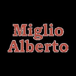 Miglio Alberto Elettricista - Cancelli, porte e portoni automatici e telecomandati Bellinzago Novarese