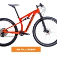 R29 FULLY CARBON RACE MOUNTAIN