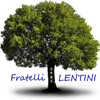 Falegnameria F.lli Lentini - Arredamenti ed architettura d'interni Nichelino