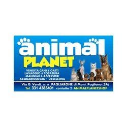 Animal Planet - Animali domestici, articoli ed alimenti - vendita al dettaglio Montecorvino Pugliano