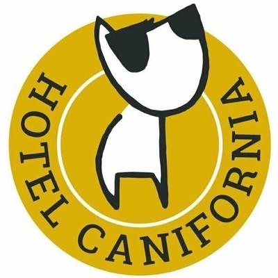 Hotel Canifornia Pensione per Cani - Animali domestici - allevamento e addestramento Narni