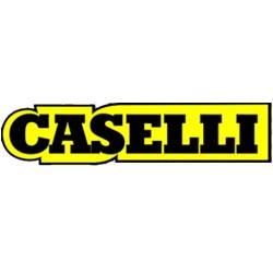 Caselli Enrico
