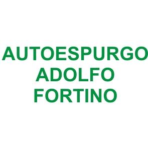 A.A.A.A. Autoespurgo Adolfo Fortino Sas - Spurgo fognature e pozzi neri Cosenza