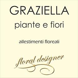 Fiori e Piante Graziella - Fiori e piante - vendita al dettaglio Massa