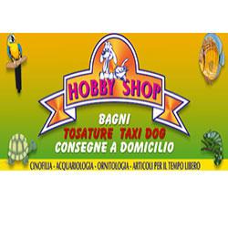 Hobby Shop - Animali domestici - toeletta Casamassima