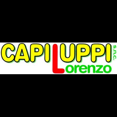 Capiluppi Lorenzo - Strade - costruzione e manutenzione Borgoforte