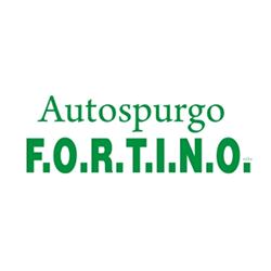 Autospurgo Fortino