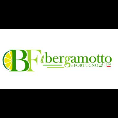 Bergamotto Azienda Agricola Fortugno - Agrumi Reggio Calabria