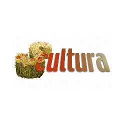 Scultura - Fiorir di Fiori - Vivai piante e fiori Torino