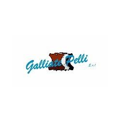 Galliate Pelli - Concerie e tintorie cuoi e pellami Galliate