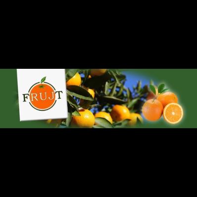 Frujt - Agrumi Locri