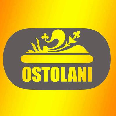 Ostolani Cartoleria Print And Copia - Fotocopie Firenze