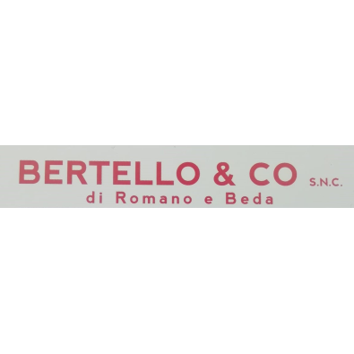 Bertello & Co - Elettrodomestici - riparazione e vendita al dettaglio di accessori Alpignano