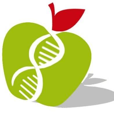 Mangia Sano e Vivi in Salute - Dottoresse Baldini Francesca & Erika Sicilia - Medici specialisti - dietologia e scienza dell'alimentazione Cosenza