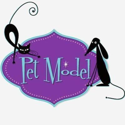 Pet Model Toeletta ed Accessori per Animali - Animali domestici, articoli ed alimenti - vendita al dettaglio Roma