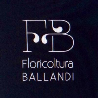 Floricoltura Ballandi - Fiori e piante - vendita al dettaglio Castagneto Carducci
